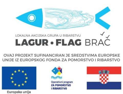 flag logo + eu